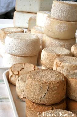 Ardsallagh Goat Cheese