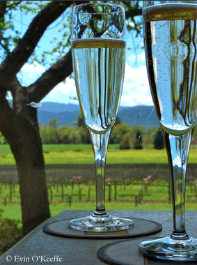 Mumm Napa, Champagne Glasses with a View